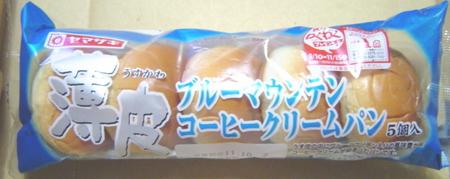 yamazaki-usukawa-bluemountain1.jpg